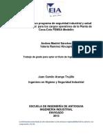 MadridAndrea_2015_DisenoProgramaSeguridad