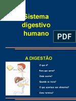 Digestão humana