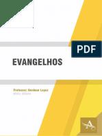 Apostila Modulo 202 Evangelhos Benhour Lopes Apostila Medio