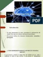 introducción a la sensopercepcion