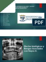 Efectos Biologicos y riesgos asociados con rayos X - Grupo  3 Presentacion
