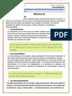 Práctica_02 - relaciones alimentarias