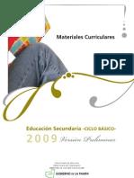 mce_mc2009_historia_1vpreliminar