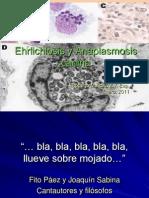 Ehrlichiosis y Anaplasmosis canina 2011