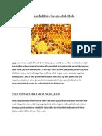 Panduan Budidaya Ternak Lebah Madu dan Jangkrik