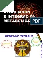 Regulación e integracion metabolica