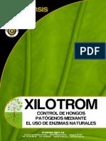 XILOTROM ES IP