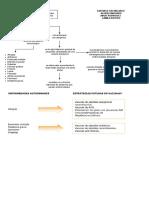 MAPA ENFERMEDADES AUTOINMUNES Y CANCER (1)