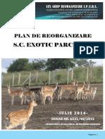 Plan Reorganizare5