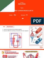 B-4to-Sistema cardiovascular III