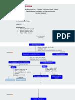 Marcha analitica Fe+2 (1)