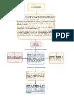Anaulidades y Su Clasificacion Andres Murillo (3)