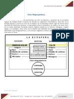 APUNTE__CICLOS_BIOGEOQUIMICOS_89614_20200201_20170731_111307