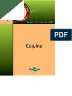 Cajuína