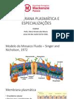 MEMBRANA PLASMÁTICA ^LJ GLICOCÁLICE E ESPECIALIZAÇÕES 69