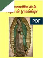 Las maravillas de la Virgen de Guadalupe
