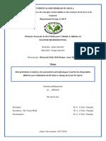 Interprétations et analyses des paramètres pétrophysiques à partir des diagraphies