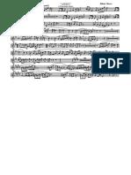 Akeri - 019 Flicorno sopranino