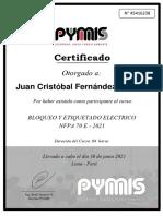 CERTIFICADO PYMIS_LOTOTO_45416238