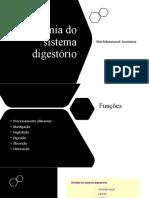 Anatomia Do Sistema Digestório
