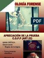 Clase Antropología