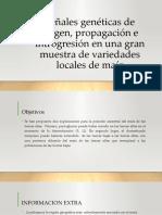 Señales genéticas de origen, propagación e introgresión