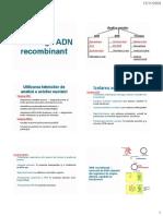 ADN_recombinant