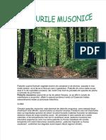 padure-musonica