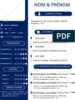 Cv Pro by Hicham Laamoud H-converted