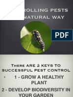 Natural Pest Control for Southern Gardens