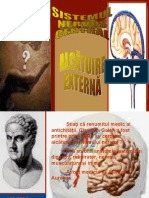 Sistemul Nervos Central. Alcatuire Externa
