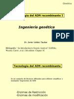 ADN recombinante I 2020