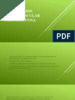 Kabat – Facilitación Neuromuscular Propioceptiva