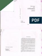 Observaciones Sobre La Inteligencia- Kachinovsky