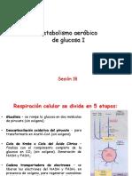 BIOQUÃ_MICA_005_sesion17-18-Metabolismo aeróbico de glucosa II_SMN (1)