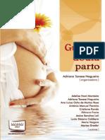 Guia da doula parto