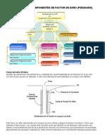 3.3 Análisis de Las Componentes Del Factor de Daño y Pseudodaño (1)