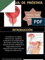 Patologia de La Prostata