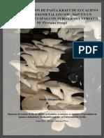 2008 Marques Master PDF