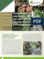 Marché d'exportation à Madagascar