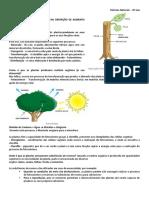 PLANTAS, reprodução humana e das plantas