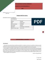 Trabajo Práctico Anual - DIAG II