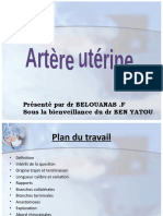 artére_utérine_f1045733011354479054