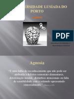 Trabalho de Neuropsicologia - Agnosias