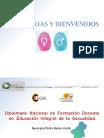 Presentación 1 - Inicio del Diplomado en EIS
