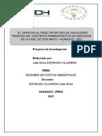 TAREA N° 03  INVESTIGACIÓN PAGO VACACIONES CAS  (LIDIA ELVIRA ESPINOZA VILLANERA)