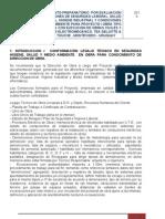INFORME TEA DELOITTE. Obra civil - electromecánica.08.2010.ed.ve..doc. REVISION 2