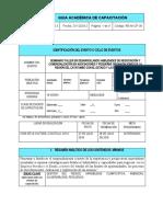 Guía académica de capacitación
