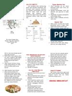 286047012 Leaflet Diit CKD