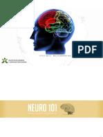 Apresentação - NeuroMarketing